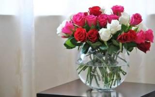 Что добавляют в розы чтобы дольше стояли