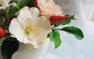 У плетистой розы плоды шиповника в сентябре