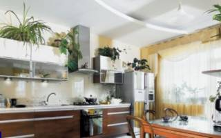 Цветы на кухне дизайн