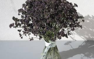 Цветы и подарки в день святого валентина