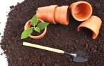 Как приготовить землю для комнатных цветов