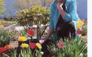 Цветочное хобби или любимые цветы в саду и в доме