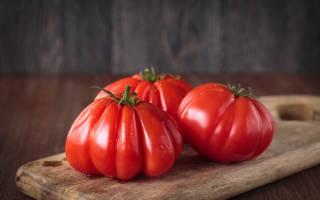 Сорта томатов для средней полосы россии мой многолетний опыт
