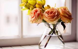 Сколько стоят розы в воде