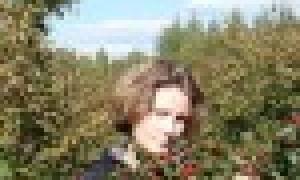 Лучшие сорта метельчатого флокса описание и фото