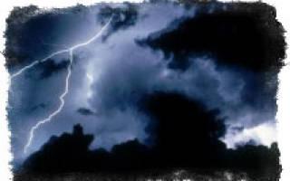 Теплые дожди и грозы предвестники первых маслят