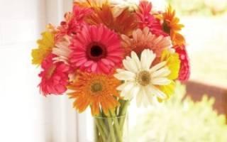 Что сделать чтоб цветы стояли дольше